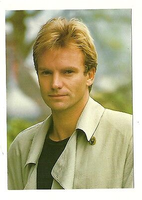Sting - a large photographic postcard