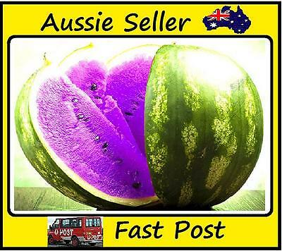 New Purple Flesh Watermelon Seeds New Varietie of Water Melon  Edible Fruits