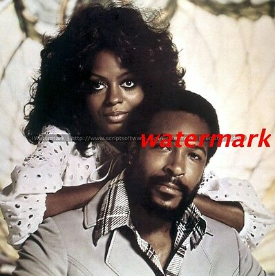 Diana Ross And Marvin Gaye Amazing 8X10 Photo