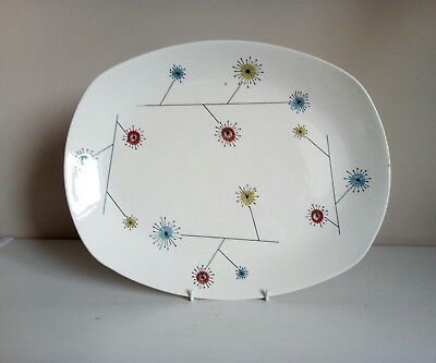 "Midwinter Stylecraft ""Flower Mist"" Medium Meat Plate"