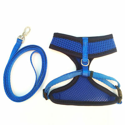 Pet Cat Harness with Leash Set Safe Body Control Walking Nylon Rope Brand New