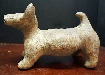 Pre-Columbian Terracotta COLIMA HAIRLESS DOG
