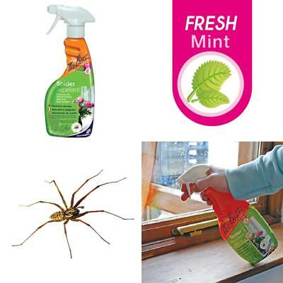 The Buzz Spider Repellent Spray Humane, Natural Mint Treatment, Deters Spiders