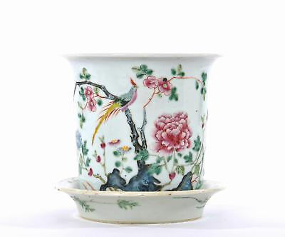 Early 20C Chinese Famille Rose Porcelain Planter Jardiniere Pot Plate Flower