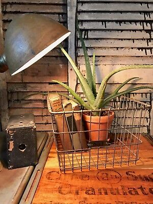 Antique Wire Locker Basket with Brass Number Tag