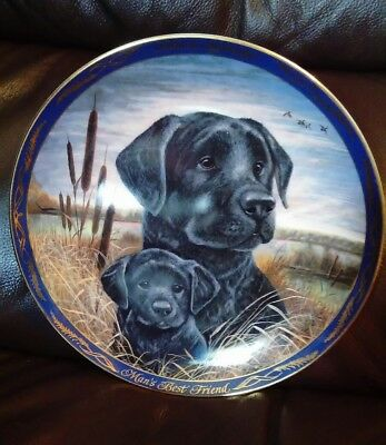 """Royal Doulton """"Look And Listen"""" - Black Labrador Collectors Plate - Limited Ed"""
