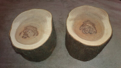 2 x Yew Wood Character Seasoned Hardwood Turning Blanks free delivery 80mm long