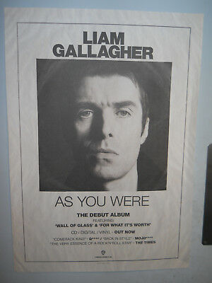 """LIAM GALLAGHER AS YOU WERE RARE PROMO POSTER 20""""x 28"""" 50.5cm x 71cm APROX OASIS"""