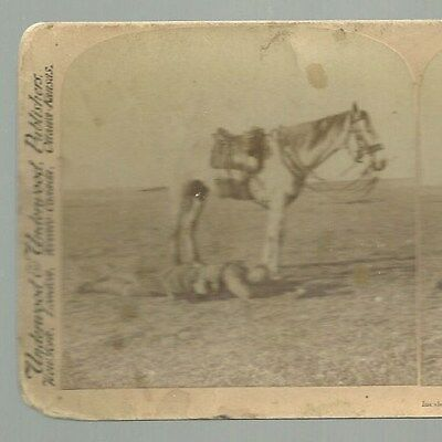 Stereo View Incidents of the Great March to B'oemfonte Boer War S.A. 1901