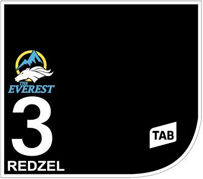 REDZEL Original Signed Saddle Cloth from The TAB Everest