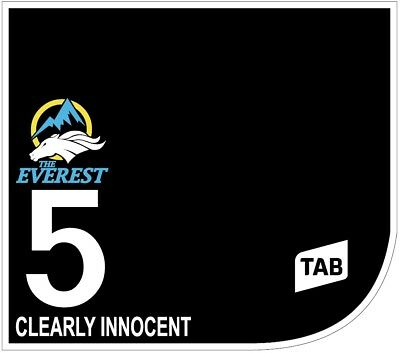 CLEARLY INNOCENT Original Signed Saddle Cloth from The TAB Everest