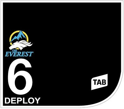 DEPLOY Original Signed Saddle Cloth from The TAB Everest