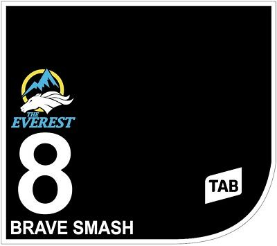 BRAVE SMASH Original Signed Saddle Cloth from The TAB Everest