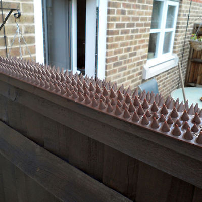 Fence Wall Top Spikes Cat Bird Guard Repellent Security Anti Stop Climb