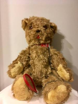 Antique Mohair 20 Inch Nickys Toy Toronto Teddy Bear  w/ Leash and Tush Tags!