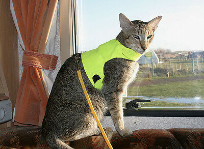 Mynwood Cat Walking Jacket Harness Vest Holster HIGH VIZ YELLOW Adult or Kitten