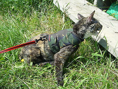 Mynwood Cat Walking Jacket Harness Holster GREEN CAMOUFLAGE Adult cat or Kitten