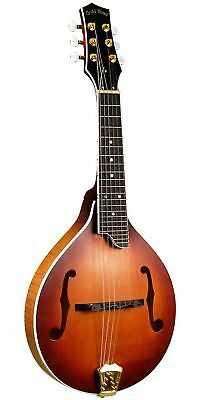 Gold Tone GM-6+ 6-String Guitar Mandolin with Pickup Vintage Brown