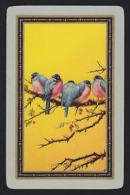 1 Single VINTAGE Swap/Playing Card USNN BIRDS on BRANCH 'THE RIVALS RI-2-1-A'