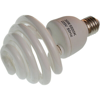 Photographic Tent Bulb 30W for Dome Light