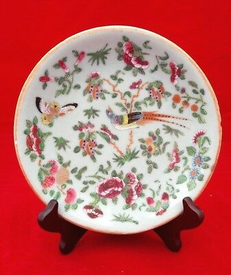 """Nice Chinese Antique 19thC 7.5"""" Famille Rose Celadon Kangxi plate A/F"""
