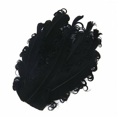 FP Black and Curly Goose Feather Cushion