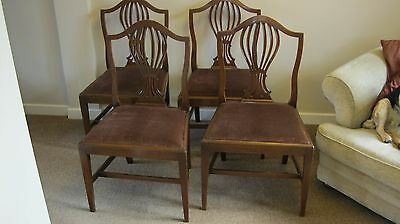 Set Of 4 Antique Georgian  Mahogany Dining Chairs