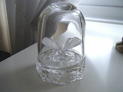 Glass Butterfly in Dome paperweight/ornament