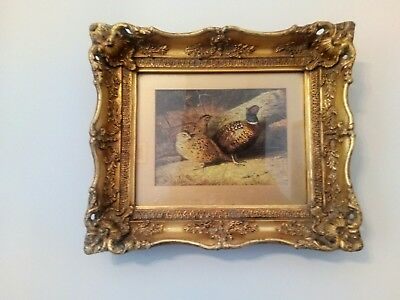 Ornate Antique Gilt Frame with  Game Bird print.