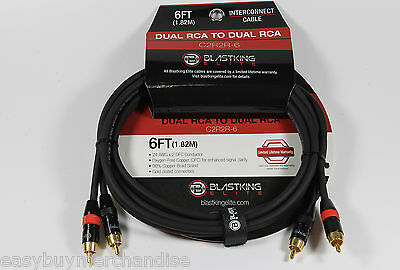 """Blastking 25"""" Single 1//4/"""" Balanced to Dual 1//4/"""" Interconnect OFC Cable"""
