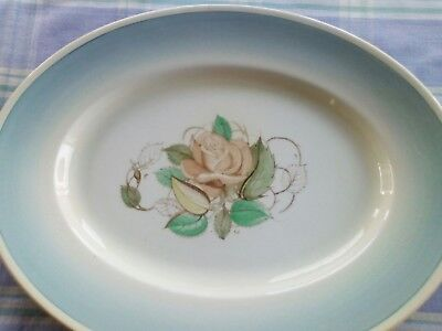 A Susie Cooper Production Patricia Rose Meat Plate Blue Border
