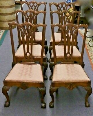 6 CHIPPENDALE STYLE Mahogany SIDE CHAIRS. Original Horsehair Upholstery. 1870.