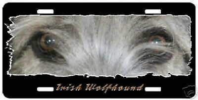 """Irish Wolfhound   """" The Eyes Have It """"  License Plate"""