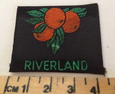 Riverland Scout Badge