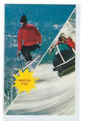 Winter Fun Sports - Vintage Postcard