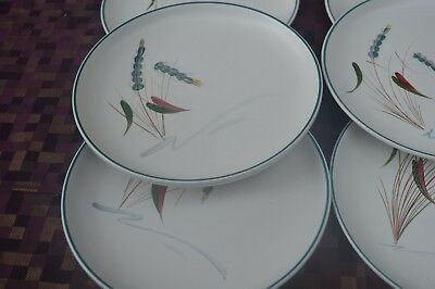 """Denby Greenwheat 8  Plates 8.3/4"""" Excellent Condition"""