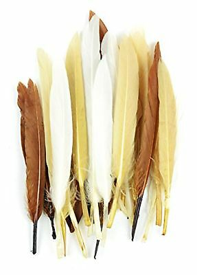 Touch of Nature 24-Piece Mini Indian Feathers for Crafting 3-Inch Earth Mix