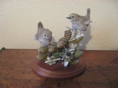 Detailed China Wren pair with cones and berries