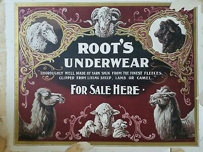 """early 1900s advertising sign Root's Underwear paper 16x20"""""""