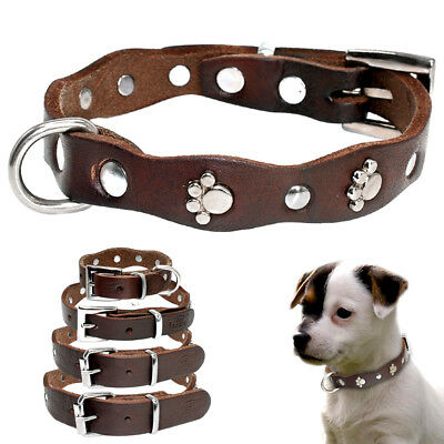 Weaver Leather Paw Studded Pet Puppy Dog Western Collars for Small Medium Dogs