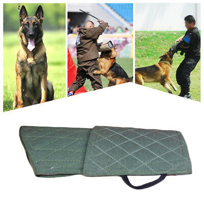 Young Police Dog Training Bite Sleeve Suit Arm Protection Intermediate Obedience