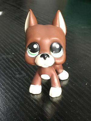 Littlest Pet Shop LPS Loose Toys Brown Great Dane Puggy Dog Green Eyes #1519