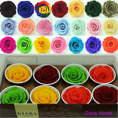 8 Mix single Rose Preserved 100% Natural Real Flower last appr 3 years no water