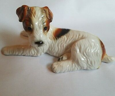Laying Wire Hair Fox Terrier Puppy Dog Figurine Royal Crown