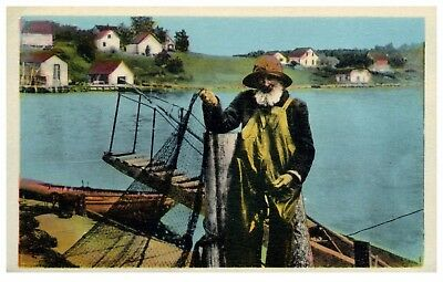 "South Shore  , Nova Scotia "" An Old Fisherman  "" Postcard  1900's"