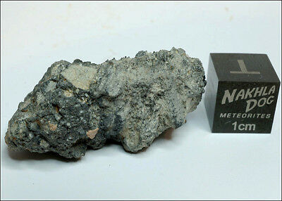 Amazing looking Lunar Meteorite NWA 11273 - 10.8 grams - Own a Piece of the Moon
