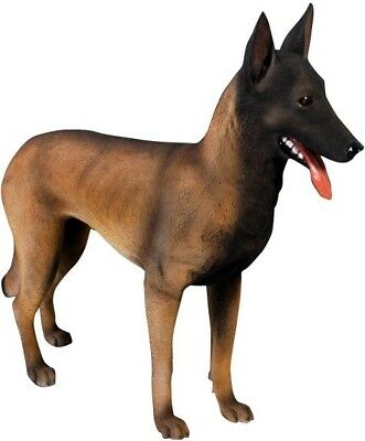 Belgian Malinois Life Size Resin Dog Statue Display Prop Animal Theme Decor