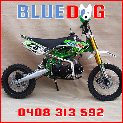 Pit Bike 125cc Many Extras 12/14 Freight INCLUDED To VIC,NSW,SA Bris Metro Green