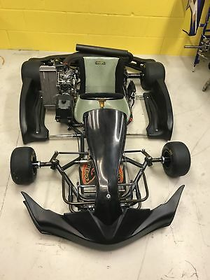 Intrepid storm go kart with rotax max engine
