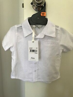 boys bebe white button up shirt